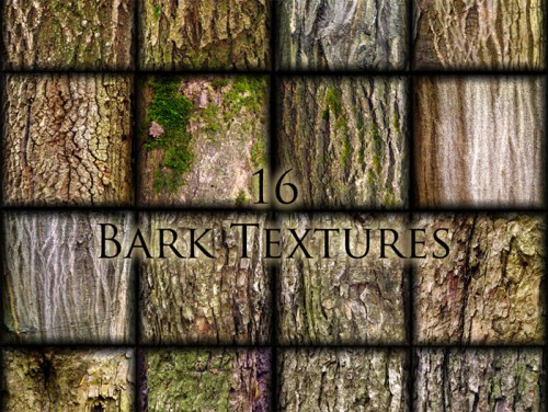 Bark Textures for Designers