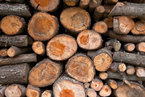 Free High Quality Log Textures
