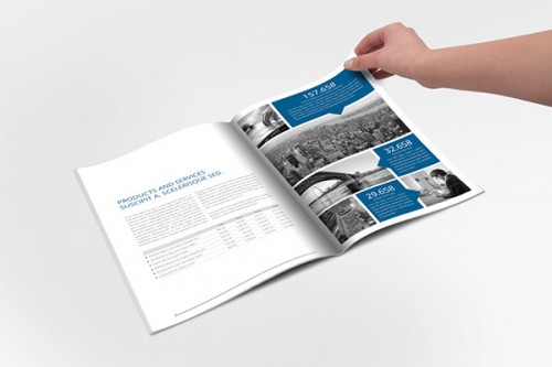 Flat Style Annual Report Ideas